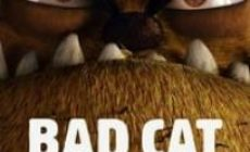 Permalink ke Download Bad Cat 2018 Sub Indo [HD]