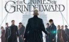 Permalink ke Download Fantastic Beasts: The Crimes of Grindelwald 2018 Sub Indo BLURAY