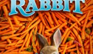 Permalink ke Download Peter Rabbit [HD] Sub Indo